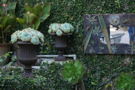 Succulents are great in the urns!