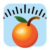 Healthy Weight Loss, Diet Tracker & Food Scanner - great little app ...