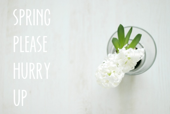 Spring please hurry up! | Just a picture - just a word | Pinterest