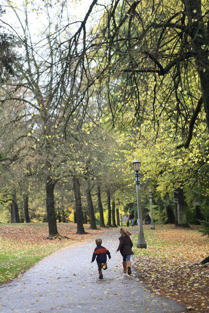 laurelhurst park.