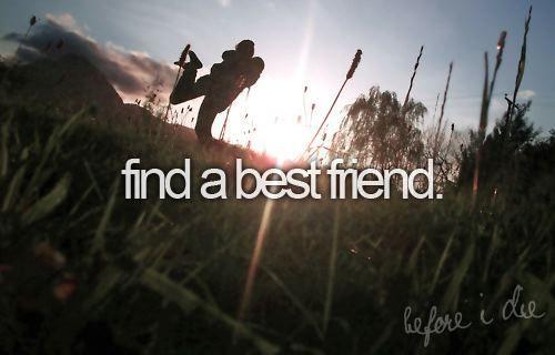 Find a best friend