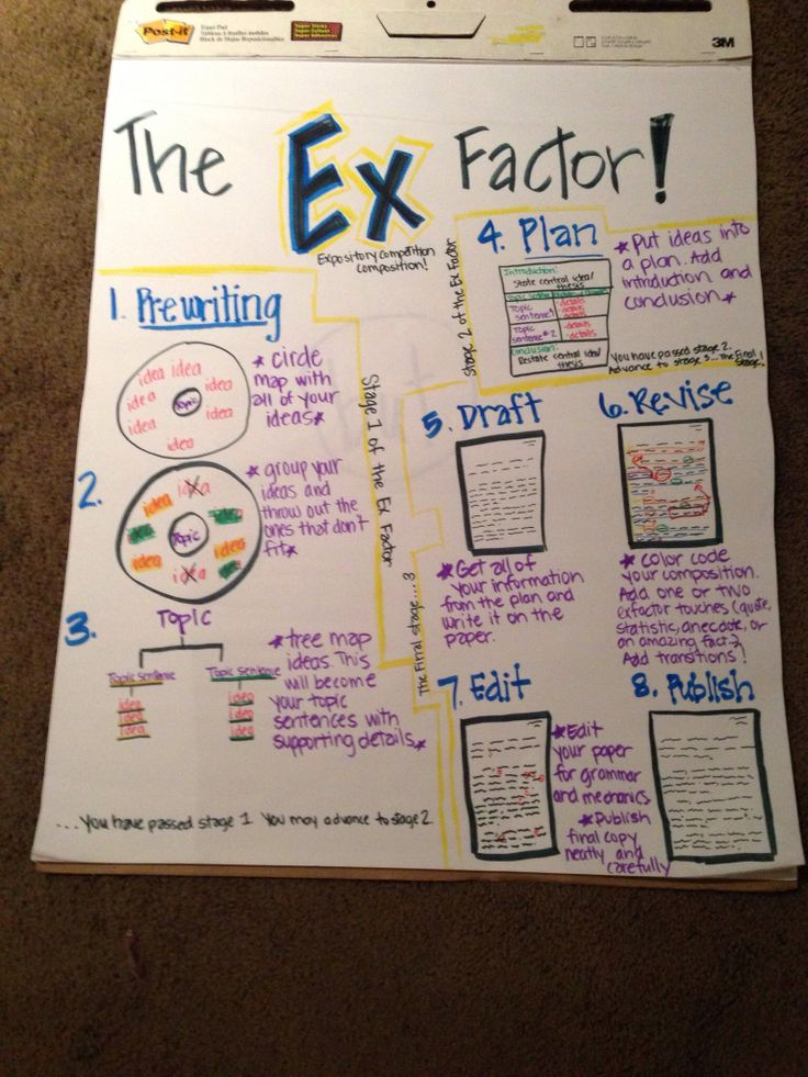 expository essay writing steps charts