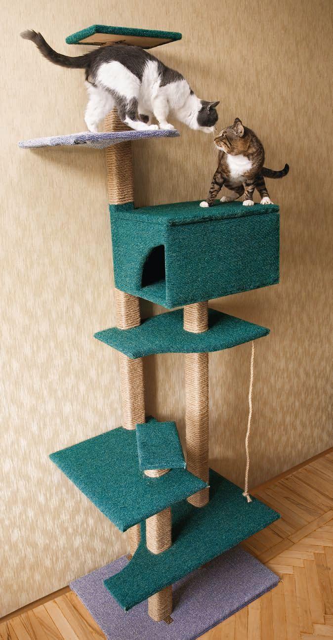 Домик когтеточка для кошки своими руками мастер класс