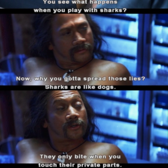 50 First Dates Quotes Rob Schneider Fifty first dates quotes ...