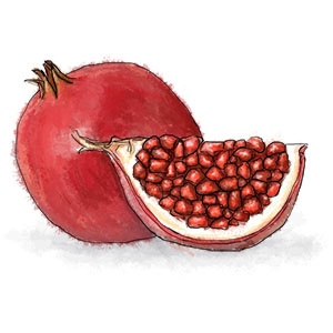 Lamb Tagine with Pomegranate | Tagine | Pinterest