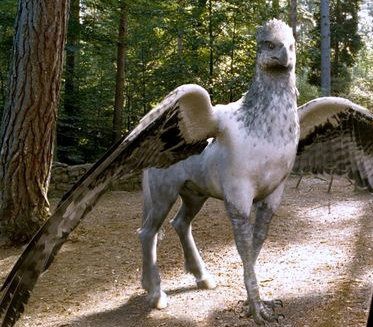 how to get a hippogriff patronus