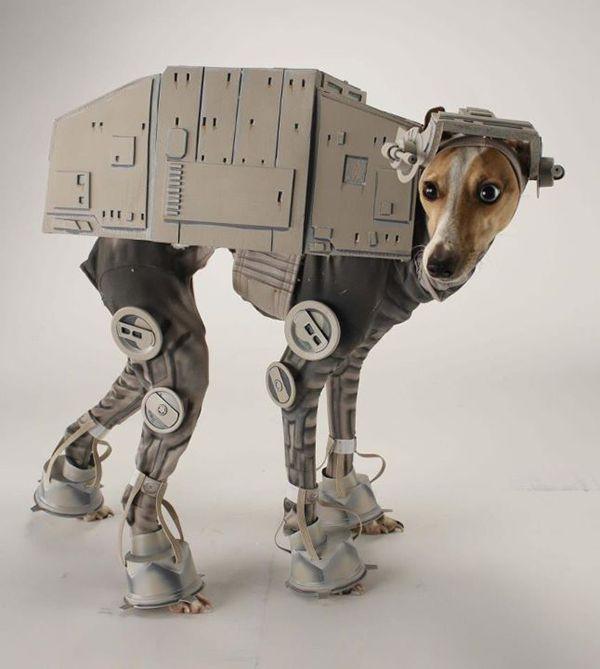 Bones Mello: AT-AT Dog