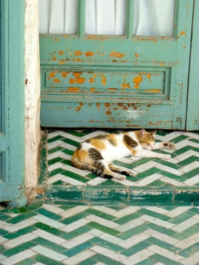 i love the old look of the door  with the patterns in the floor tiles.
