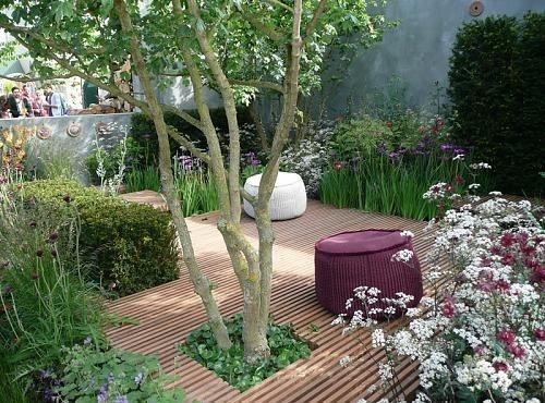 Wild Backyards : Topiary, tree and wild flowers  Backyard ideas  Pinterest