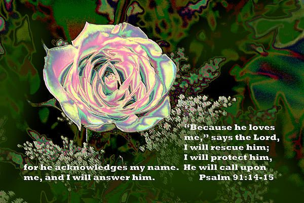 bible verses related to valentine's day