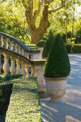 love balustrades, boxwood. would make a pretty entrance