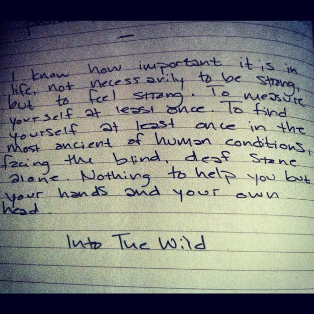 Into the Wild Questions and Answers