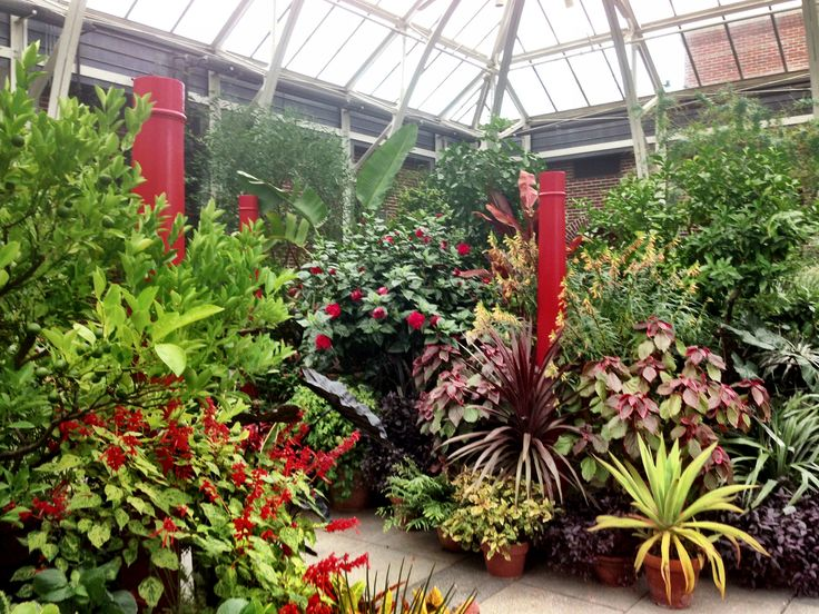 Pin By Laury Kelly On Botanical Gardens And Arboretums Pinterest
