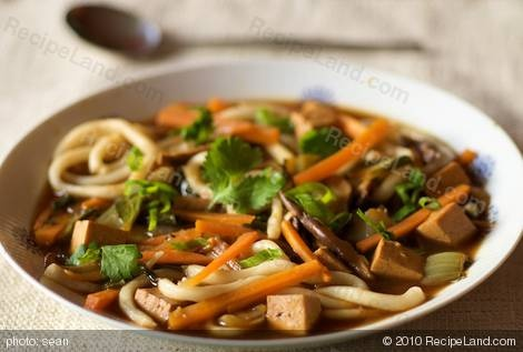 Udon noodle soup with vegetable broth and vegetarian oyster sauce. # ...