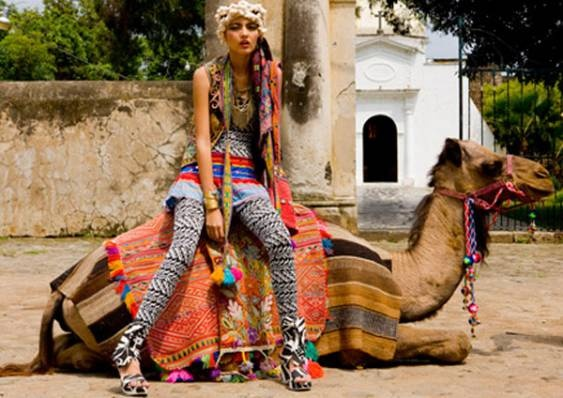 Love the colors and the camel!