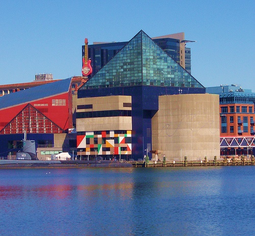 National Aquarium Baltimore Md Places To Take Your Kids Before The