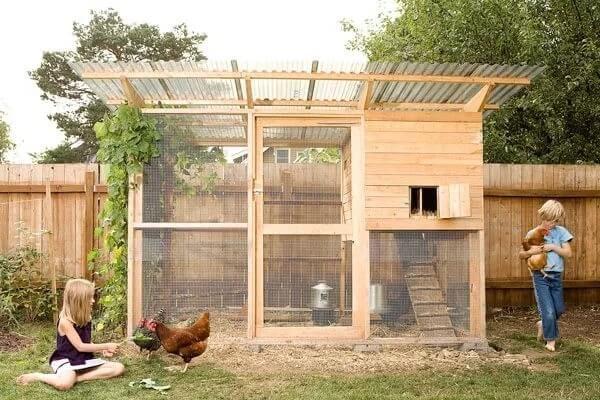 Как построить курятник на даче на 10 кур