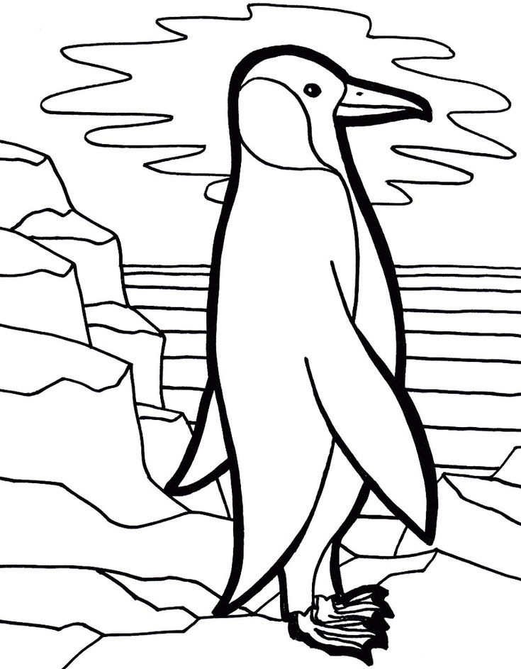 16++ Printable cute penguin coloring pages info