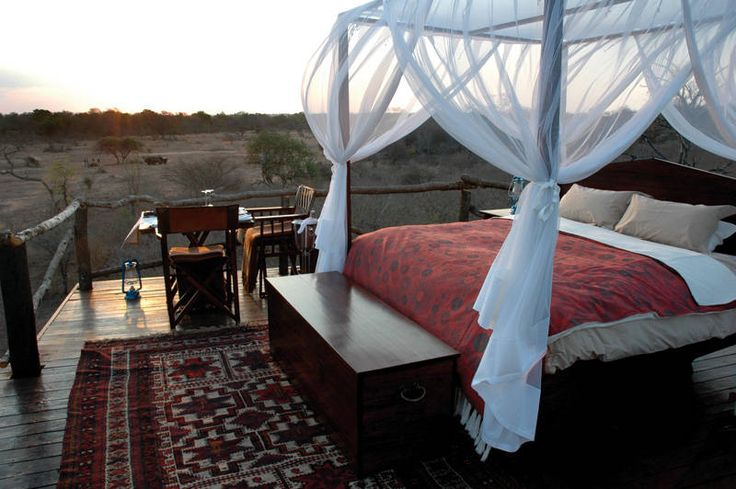African safari with treehouse lodging
