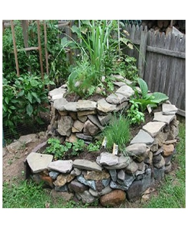 Permaculture design gardening and greens pinterest for Permaculture garden designs