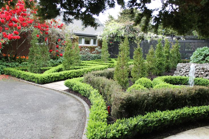 Everything keeps growing! | Gorgeous Gardens | Pinterest
