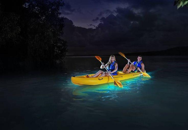 Bahia Bioluminicente En Fajardo Pr Turismo Interno