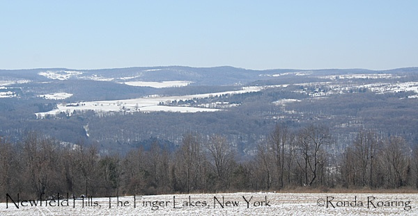 The Finger Lakes were created by glaciers thousands of years ago, which scoured the earth, leaving finger-like lakes surrounded by hills.