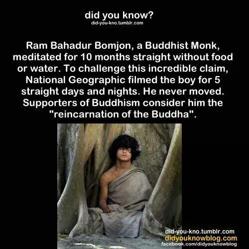 Possible reincarnation of the Buddha   Reincarnation   Pinterest