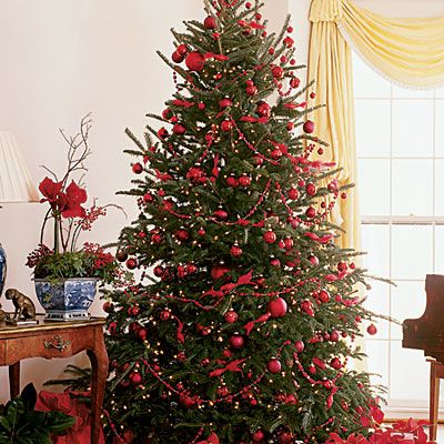 Smell the cedar in the air christmas is here oh christmas tree