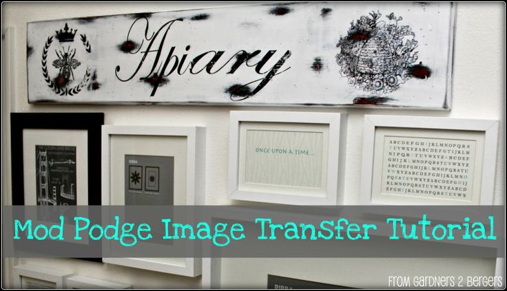 Image Result For Diy P O Transfer To Canvas Mod Podge