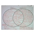 Julius Caesar and Augustus Caesar Two Circle Venn Diagram (Ancient Rome) $1