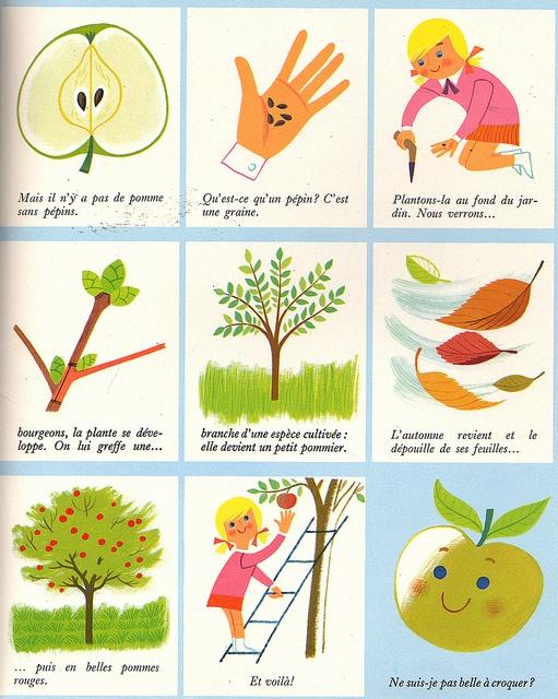 """""""How Apples Grow"""" from """"La Forêt"""" by Alain Grée. Casterman, Belgique. 1964."""