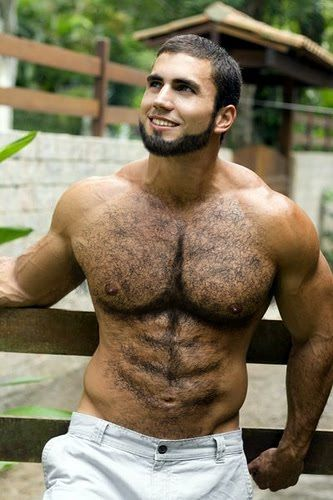 Mens hairy ass pictures