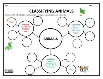 classifying animals reptiles amphibians and mammals. Black Bedroom Furniture Sets. Home Design Ideas