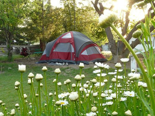Camping In The Backyard With Toddlers : backyard camping  Camping with Kids  Pinterest