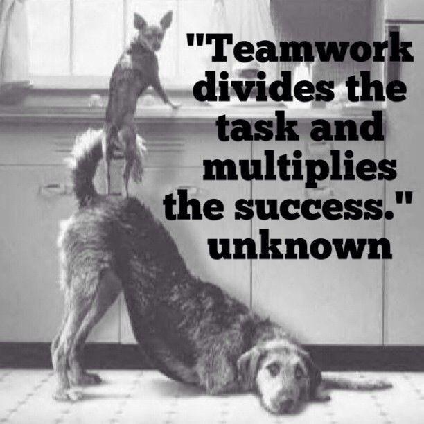 funny teamwork ...