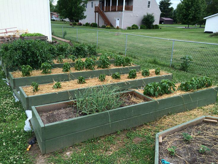 Cheap Raised Garden Ideas Photograph Raised Garden Beds