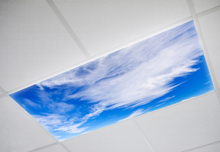 The gallery for fluorescent light covers for classroom - Classroom fluorescent light covers ...