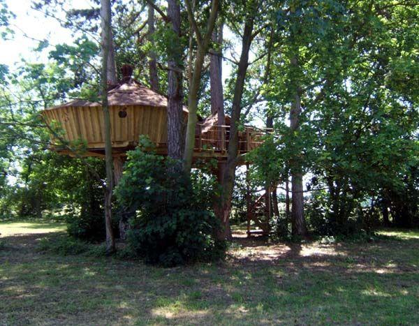 Cabane En Bois Dans Les Arbres : Pin by Sylvie Vo on cabane en bois dans les arbres Pinterest