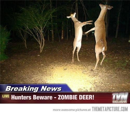 All hunters beware zombie deer