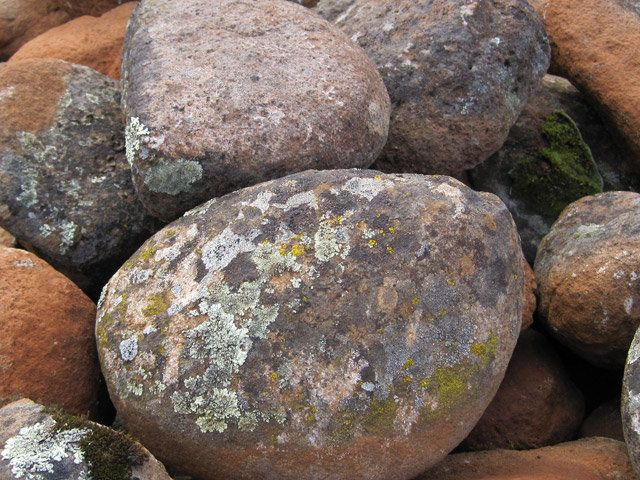Moss Rock Boulders Landscape Design Pinterest