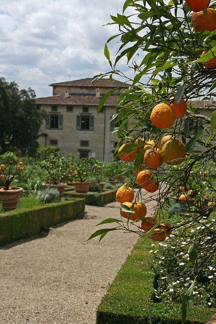 Villa Medici di Castello, Tuscany, Italy