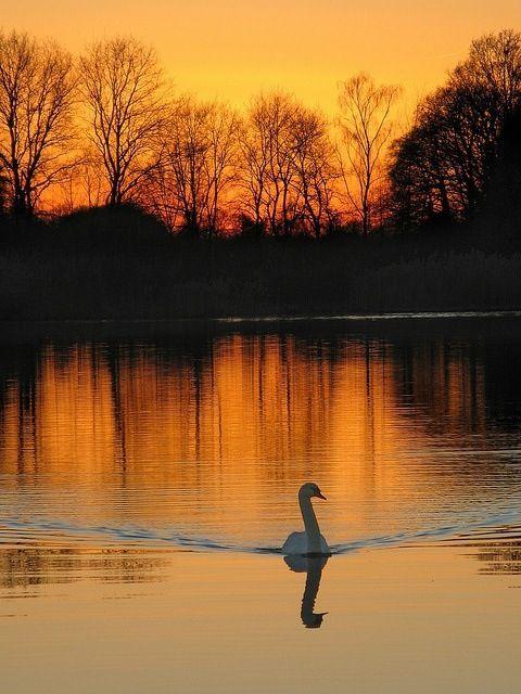 So serene and lovely.