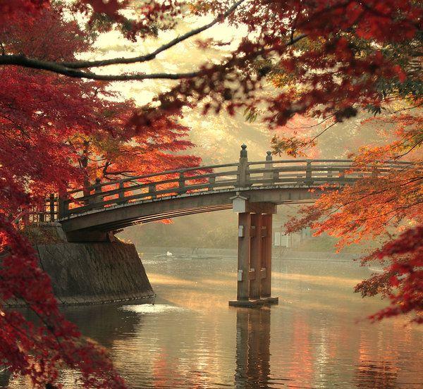 beautiful !!