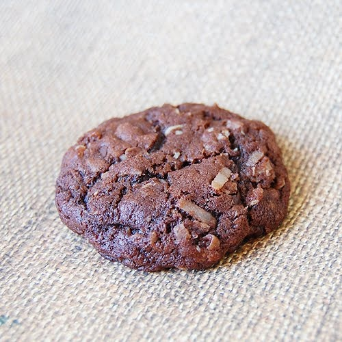 Coconut Oatmeal Chocolate Chip Cookies | Cookies and Bars | Pintere ...