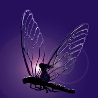 dragonfly angel | Purple Dragonfly Style