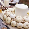 Miniature Pumpkins Wreath  Tiny white pumpkins, found with other common fall gourds, cover a straw wreath. Secure pumpkins on the wreath with glue. Fill the open spaces with pistachios.