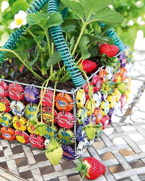 bottle top basket