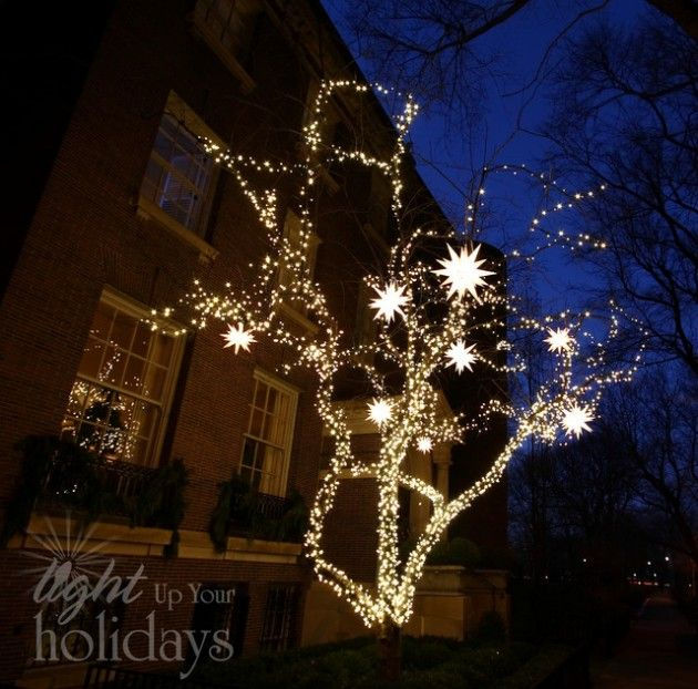 Diy Outdoor Christmas Decorations With Lights : Awesome diy christmas lighting idea outdoor
