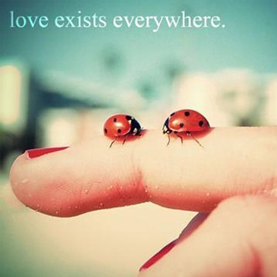 Love exists everywhere, you just have to believe in it ♥ #quote #divaaccessories